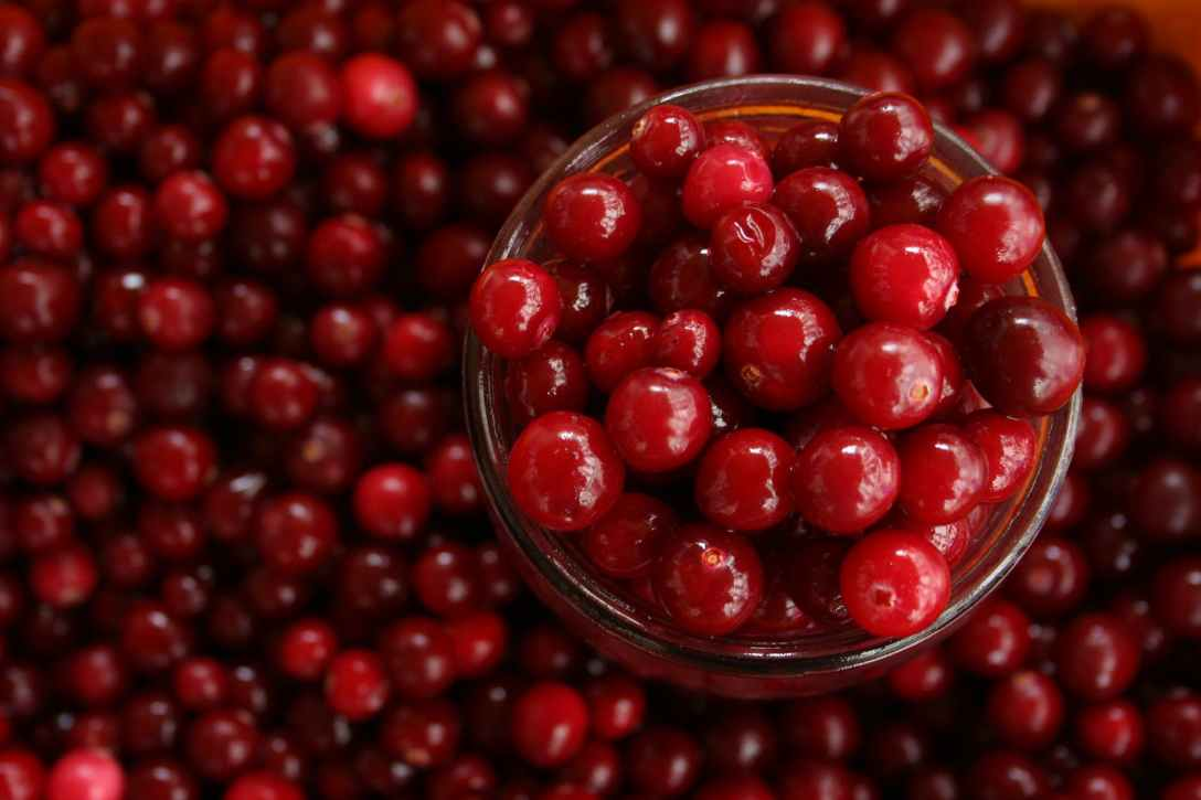 cranberries magickal ingredient
